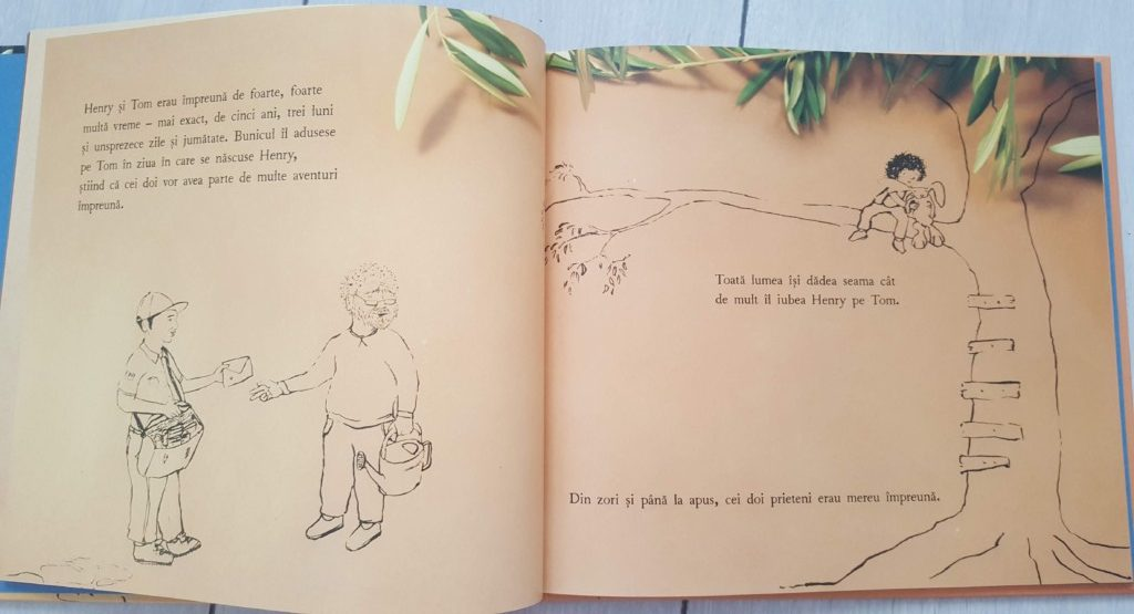 Secvență carte - Henry și puterasa imaginației
