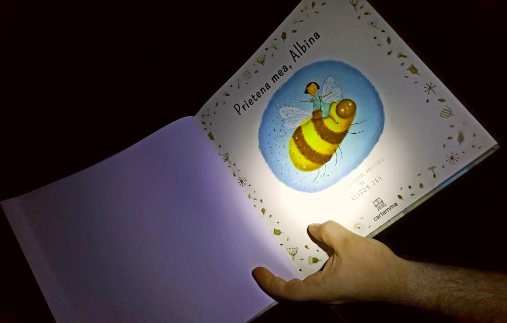 Poveste de seară la lanternă