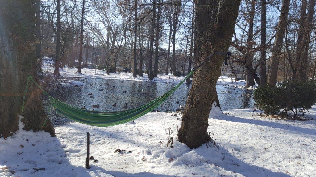 Școala din parc
